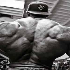 Scheda allenamento dorsali per la massa