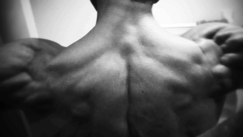 Esercizi per la schiena: quelli che funzionano