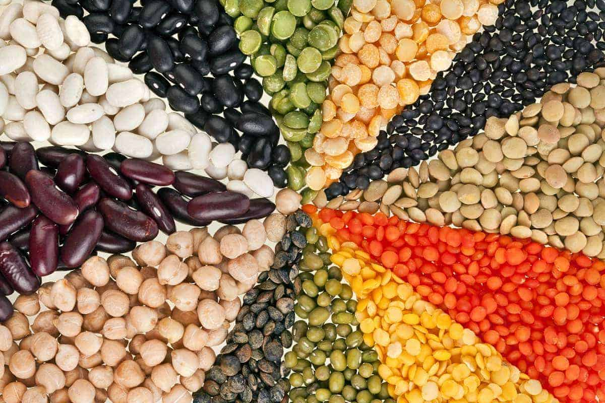 Proteine vegetali: la soia