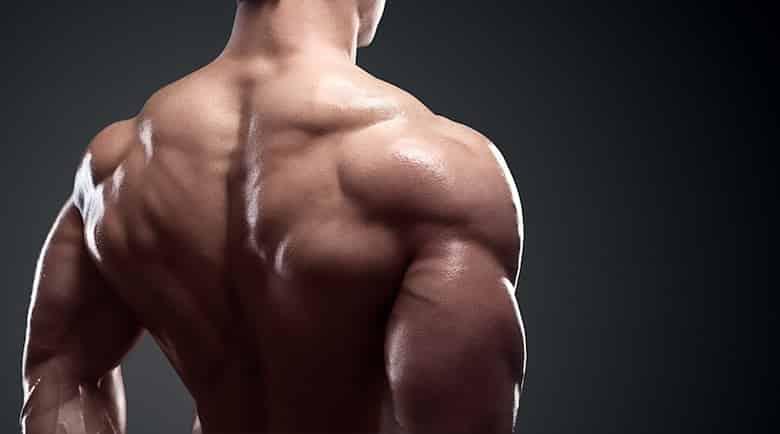 scheda massa spalle