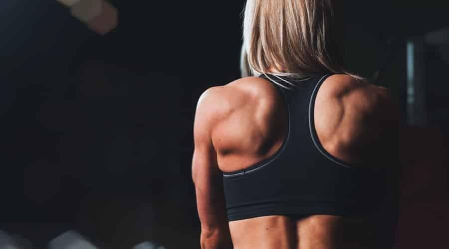 Proteine per lo sport