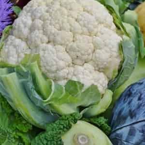 Antiossidanti nell'alimentazione: guida completa