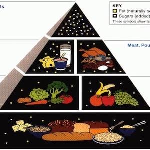 Piramide alimentare: la base del mangiar bene