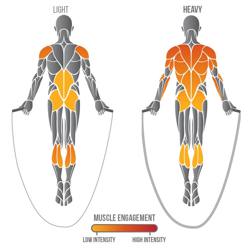 muscoli coinvolti nel salto della corda con heavy jump rope
